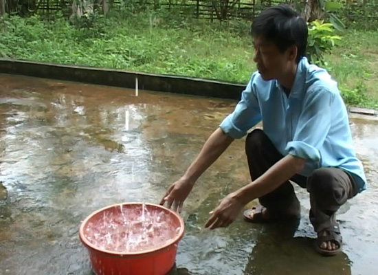 Nước mưa
