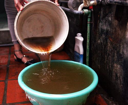 Hiện tượng nước có màu gạch cua này gây ảnh hưởng nghiêm trọng tới sức khỏe người tiêu dùng