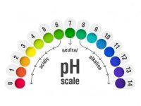 Độ pH của nước ảnh hưởng như thế nào đến sức khỏe con người?