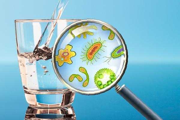 Vi khuẩn trong nước