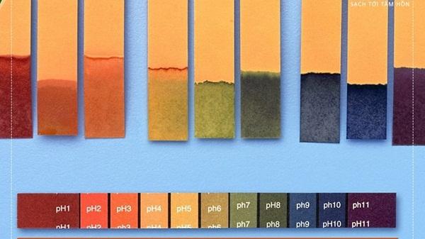 Khái niệm giấy quỳ tím