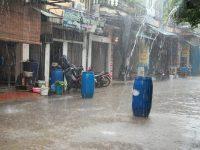 Tại sao ngày nay không nên hứng nước mưa để sử dụng?