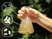 Làm thế nào để kiểm tra chất lượng nước sinh hoạt?