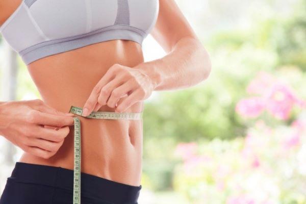 catechin giúp giảm cân